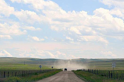 Blasingame Road Too by Clarice  Lakota