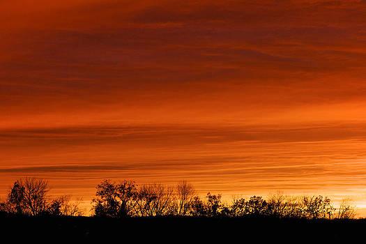 Blaze of Glory by Jane Eleanor Nicholas