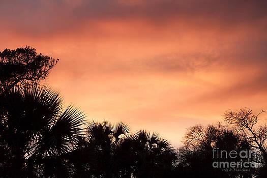 Blazing Sunset by Todd Blanchard
