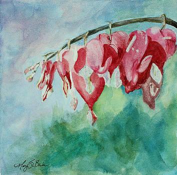 Mary Benke - Bleeding Hearts
