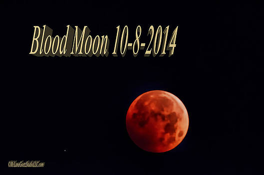 LeeAnn McLaneGoetz McLaneGoetzStudioLLCcom - Blood Moon 2014
