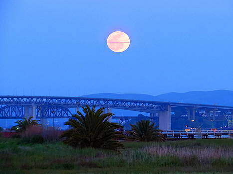 Blood Moon Rising over the Benicia Bridge by Brian Maloney