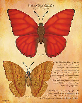 Blood Red Glider Butterfly by Tammy Yee