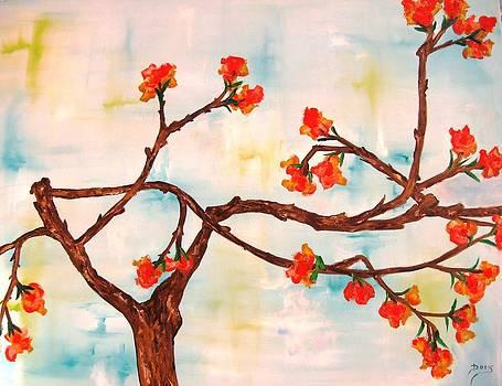 Bloom by Doris Cohen