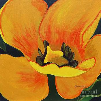 Barbara Griffin - Bloomed Yellow Tulip