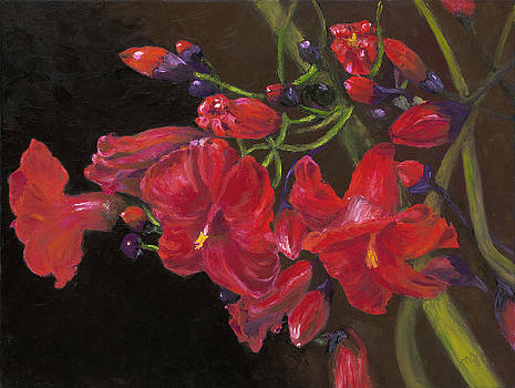 Bloomin' Red by Maria Gibbs