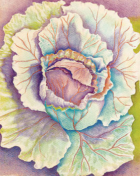 Christel Williams - Blooming Cabbage