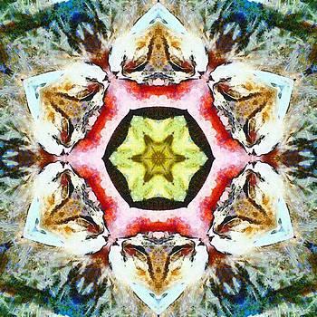 Blooming Fibonacci by Derek Gedney