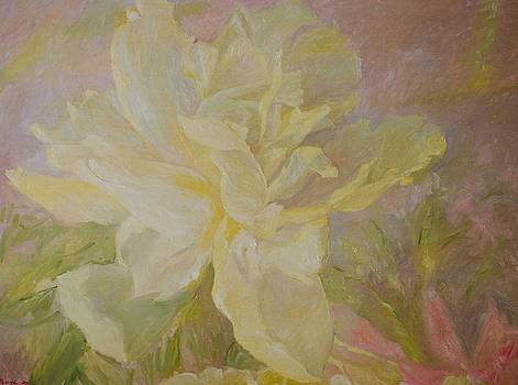 Blooming peony by J Michael Orr