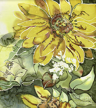 Blooming Sunflower  by Barb Maul