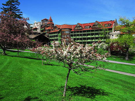 Blooming Tree at Mohonk Mtn. House by April K Rabino