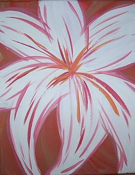 Blossom by Kate McTavish