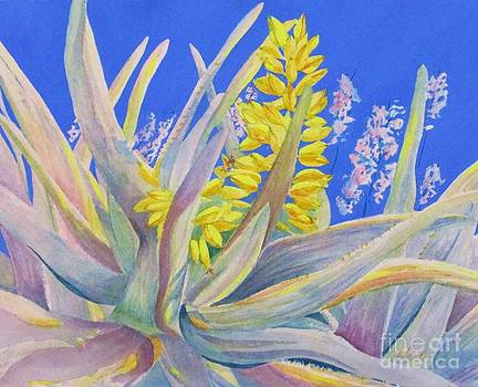Blossoming Aloe by Beth Fischer