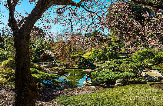 Jamie Pham - Blossoms in the Garden
