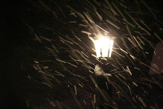 Blowing Snow against Lamp by Carolyn Reinhart
