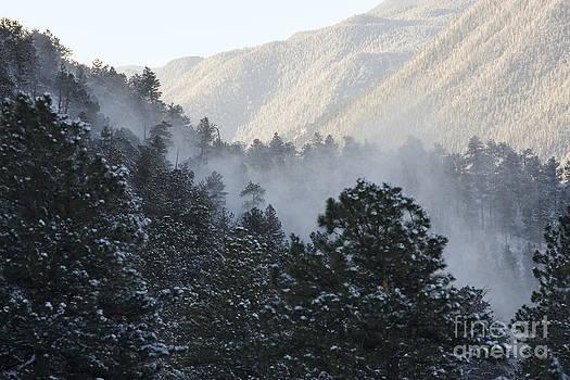 Steve Krull - Blowing Snow