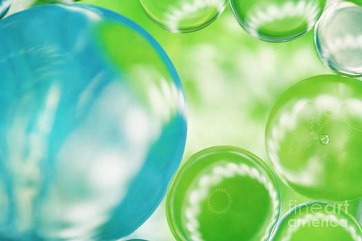 LHJB Photography - Blue and Green Bubble art