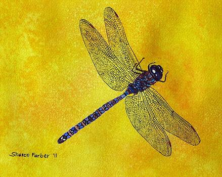 Blue and Purple Dragonfly by Sharon Farber