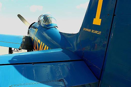 Howard Markel - Blue Angel Bearcat