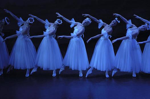 Blue Angels by Atalay Karacaorenli