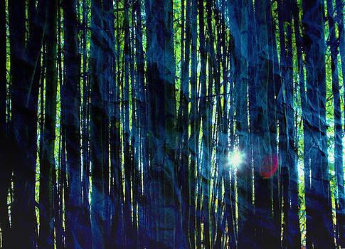 Daniel Furon - Bamboo Blue