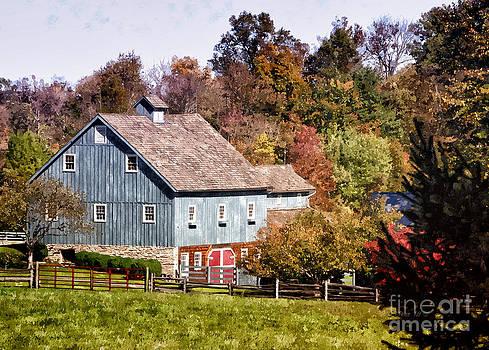 Shari Nees - Blue Barn