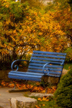 Blue Bench - Autumn - Deer Isle - Maine by David Smith