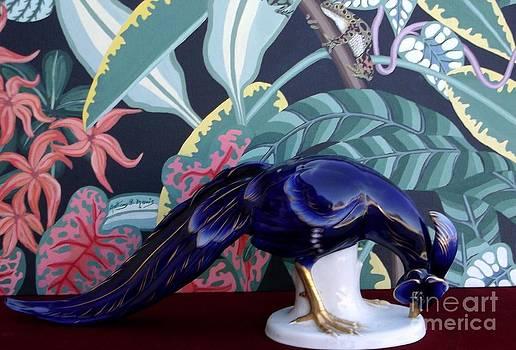 Blue Bird by Anthony Morris