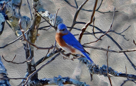 Blue Bird by Laurie Winn Adams