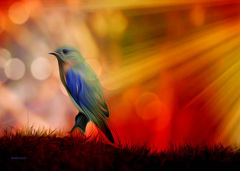Blue Bird of Happiness by The Feathered Lady