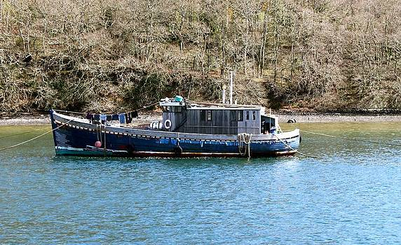 Blue Boat on the Dart  by James  Wasdell