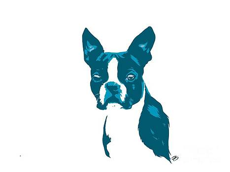 Blue Boston by Rachel Barrett