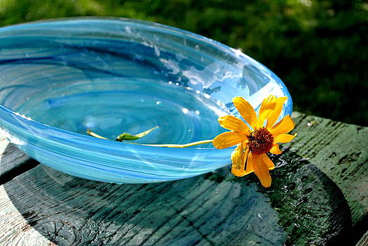 Blue Bowl...still life by Jan Scholke