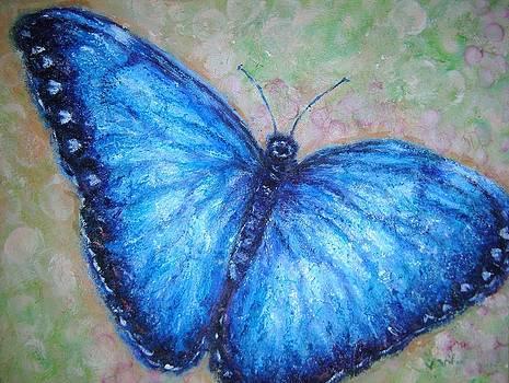 Blue Butterfly by Vicki Wynberg