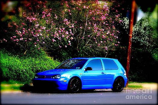 Blue Car Pink Magnolia  by Jay Nodianos