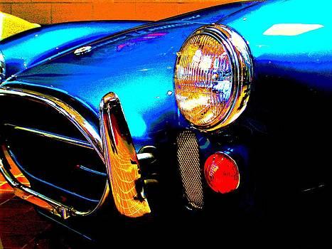 Blue Cobra by Richard Klingbeil