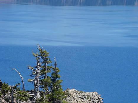 Baslee Troutman - Blue Crater Lake Oregon Art Prints