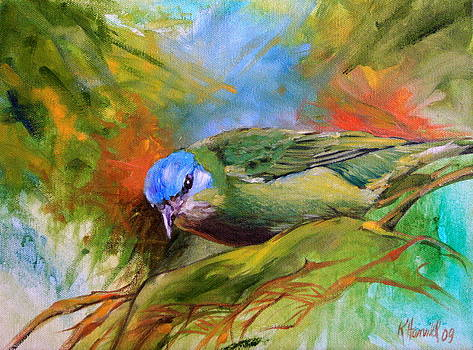 Blue Dacnis by Kitty Harvill