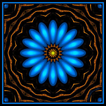 Blue Daisy Flower by Marcela Bennett