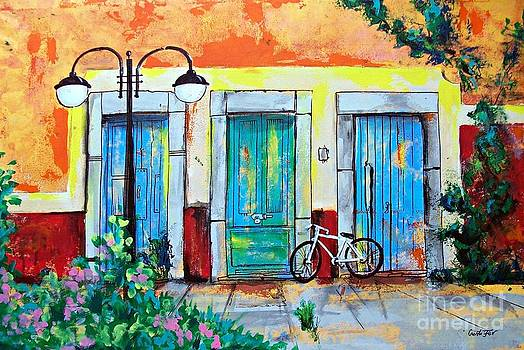 Blue doors with bicycle  by Cristiana Marinescu