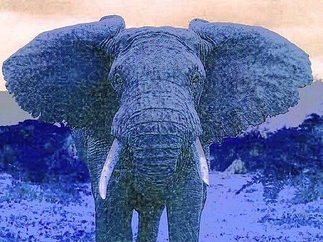 Blue Elephant by Kathy Budd
