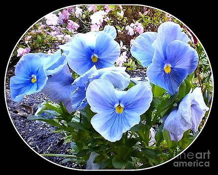 Blue Flowers Framed 2 by Cindy New