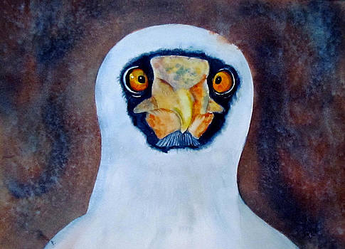 Susan Duxter - Blue Footed Booby