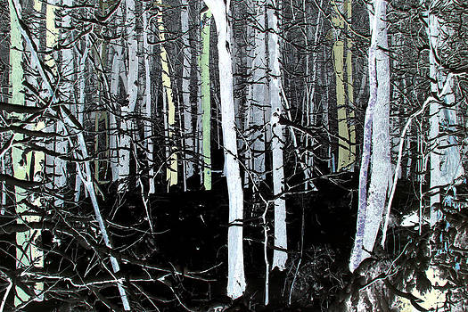 Anne Barkley - Blue Gray Forest