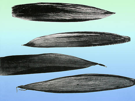 Blue-green cornhusks by Susan Smith Evans