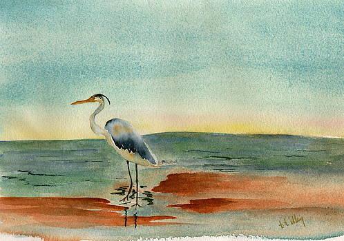 Blue Heron at Sunrise by Teresa Tilley