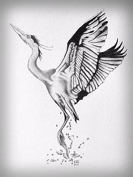 Gilbert Photography And Art - Blue Heron