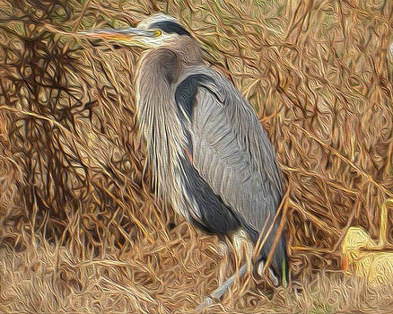 Blue Heron by Laurie Winn Adams