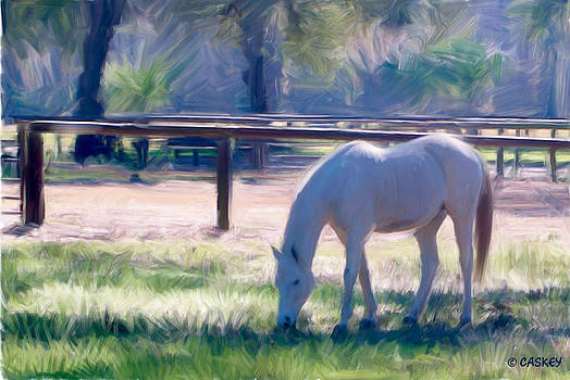 Blue Horse by Bethany Caskey