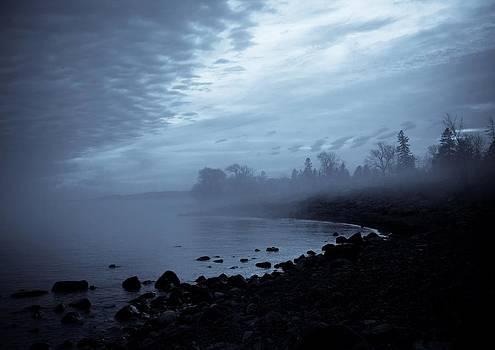 Blue Hour Mist by Mary Amerman